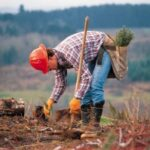 Environmental worker